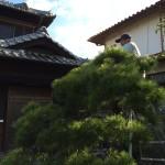 Gardener -1