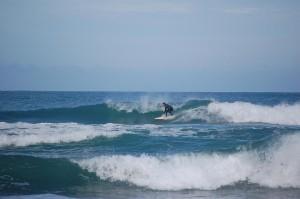 taka surfing
