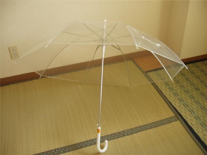 The Japanese and their umbrellas