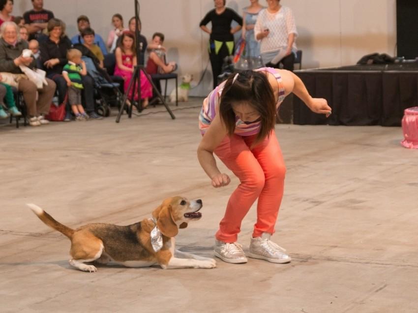 Manako SUGIYAMA – Dog Sports Enthusiast
