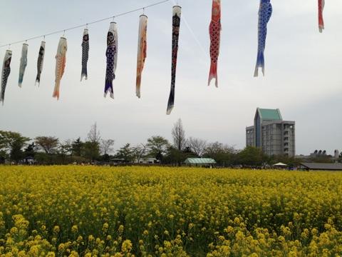 Golden week in Japan