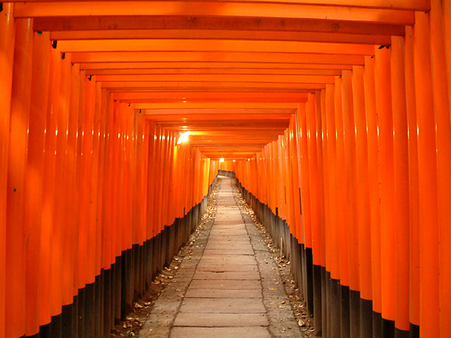 Torii – the gate to the sacred