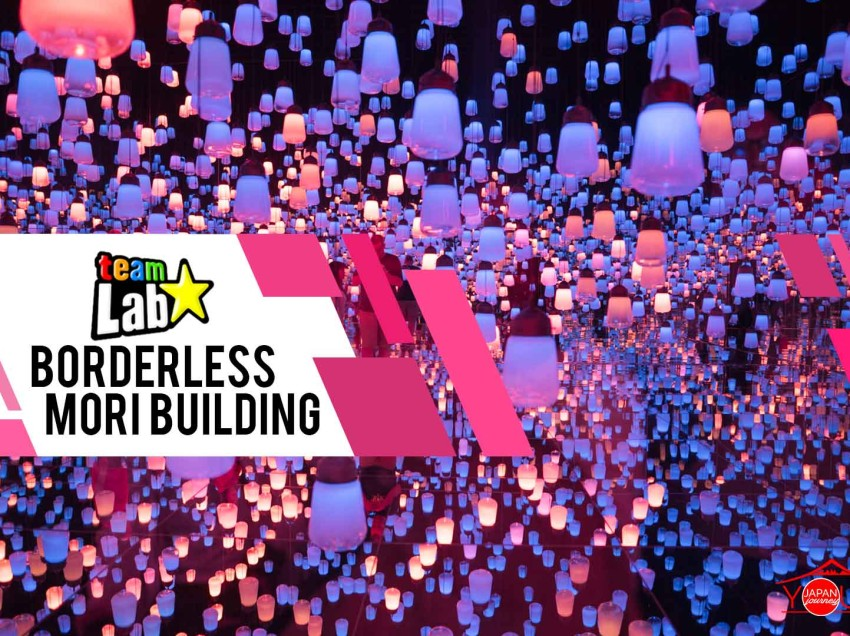 Experience teamLab Borderless