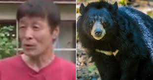 Bear Vs Karate